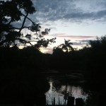 Sunset at the Zoo